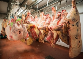 Neil-Bigwood-Commercial-Complete-Meats-Factory-Tour-211