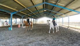 Neil-Bigwood-Commercial-Hacienda-Horses-02