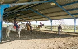 Neil-Bigwood-Commercial-Hacienda-Horses-08