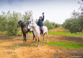 Neil-Bigwood-Commercial-Hacienda-Horses-20
