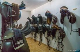 Neil-Bigwood-Commercial-Hacienda-Horses-51