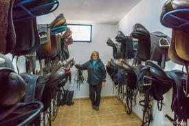 Neil-Bigwood-Commercial-Hacienda-Horses-53