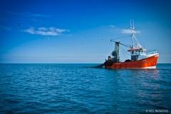 Neil-Bigwood-Commercial-Fishing-Trawler-08