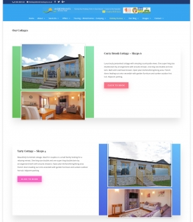 Neil-Bigwood-Website-Design-08