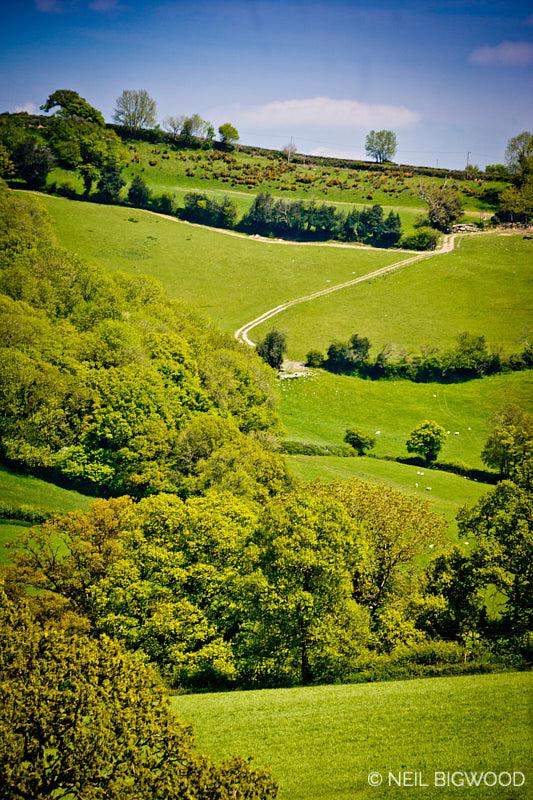 Neil-Bigwood-Landscapes-23