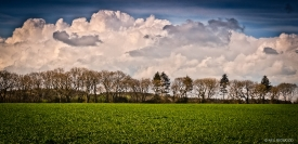 Neil-Bigwood-Landscapes-16