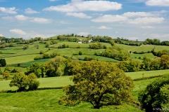 Neil-Bigwood-Landscapes-22