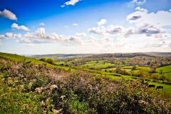 Neil-Bigwood-Landscapes-29